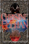 Dark Storm (Carpathian series)