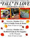 Animal shelter adoption event
